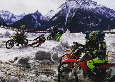 Skijöring Training